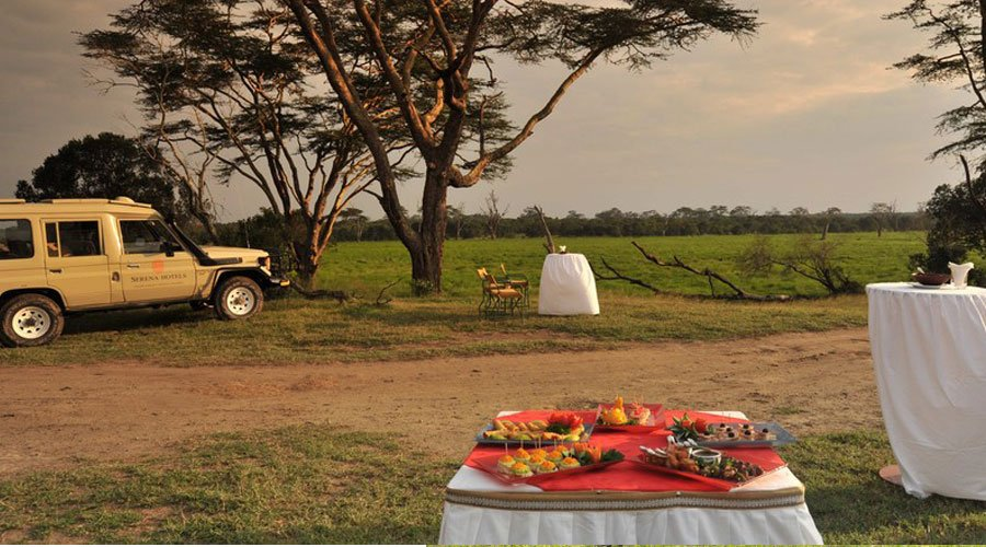 Sweetwaters-Serena-Camp4 - 10 Kenyan Road Trips To Take Before Hitting 40 (UPDATED 2019)