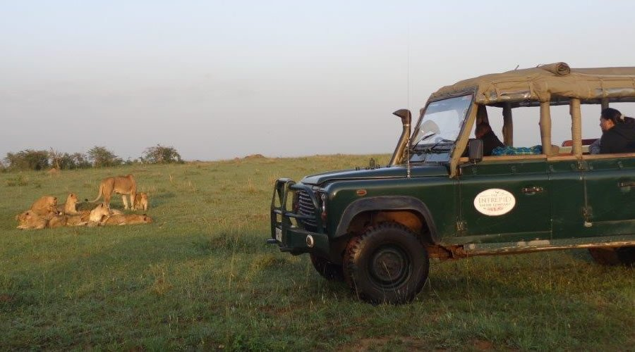 mara-explorer-game-drives - Kenya and Mauritius Honeymoon Holiday Package