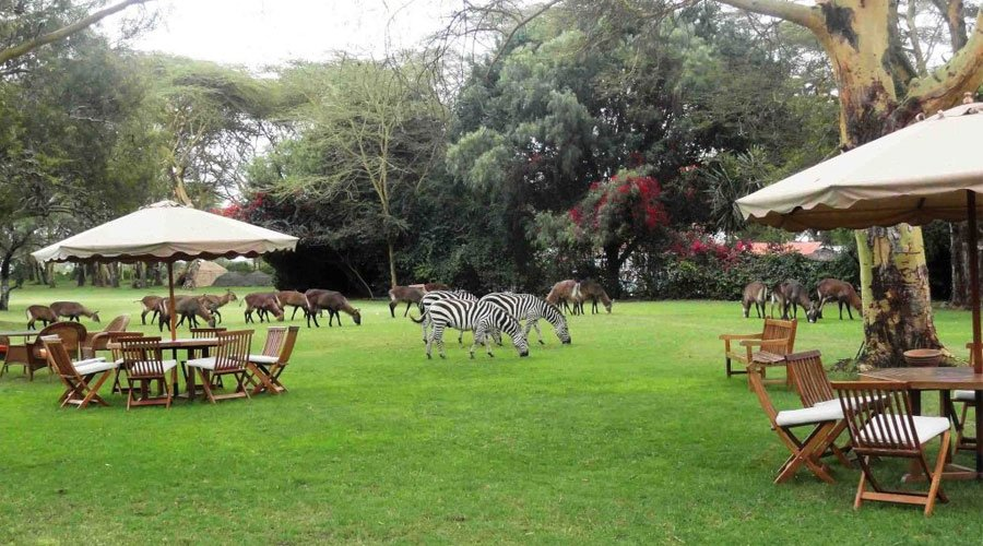 Lake-Naivasha-Country-Club-9 - 10 Kenyan Road Trips To Take Before Hitting 40 (UPDATED 2020)