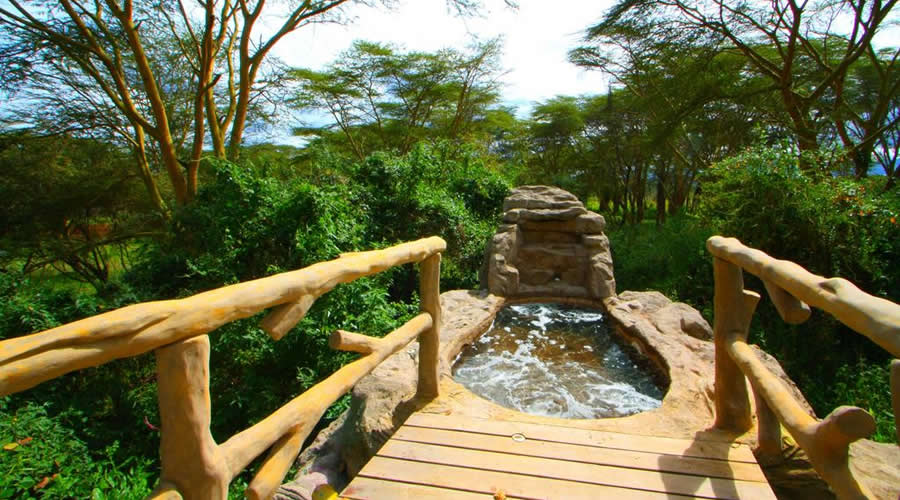 wileli-house-excutive-suite - Honeymoon in Kenya? 2019 Best Honeymoon Destinations & Packages