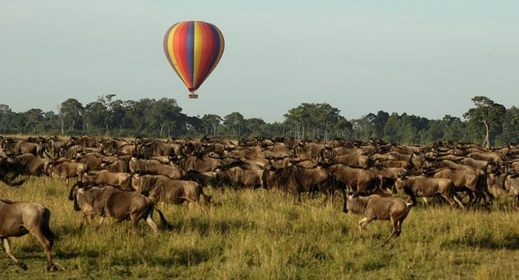 Masai-Mara-Hot-Air-Balloon-1 - Masai Mara Hot Air Balloon