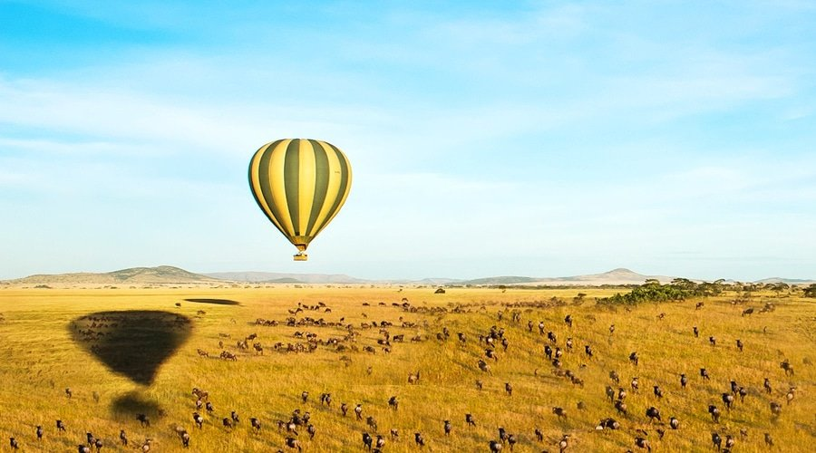 masai-mara-safari-8 - Kenya and Mauritius Honeymoon Holiday Package