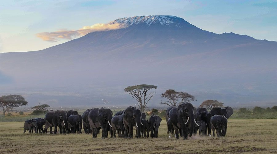 Amboseli - Kenya in Pictures: 10 Beautiful Places to Photograph