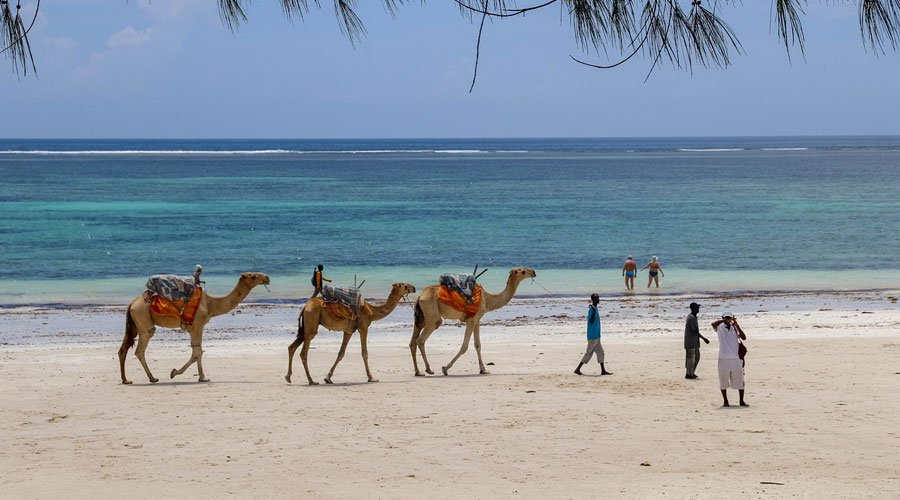 Diani-Beach - Kenya in Pictures: 10 Beautiful Places to Photograph
